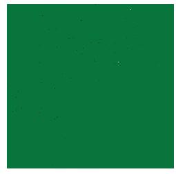 Nature Sound Spa Tree