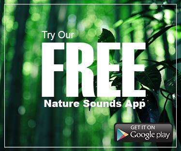 Nature Sound Spa App