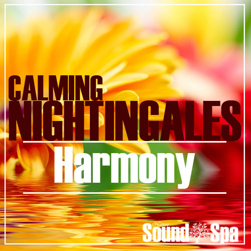 Calming Nightingales