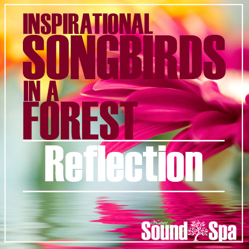 Inspirational Songbirds In A Forest
