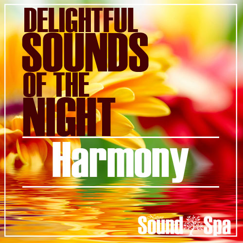 Delightful Sounds Of The Night