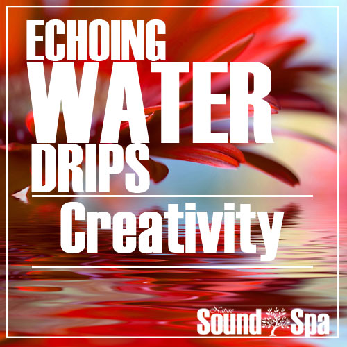 Echoing Water Drips