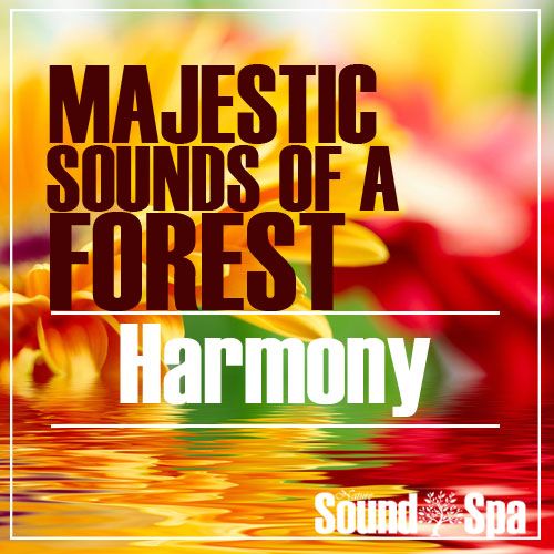 Majestic Sounds Of A Forest