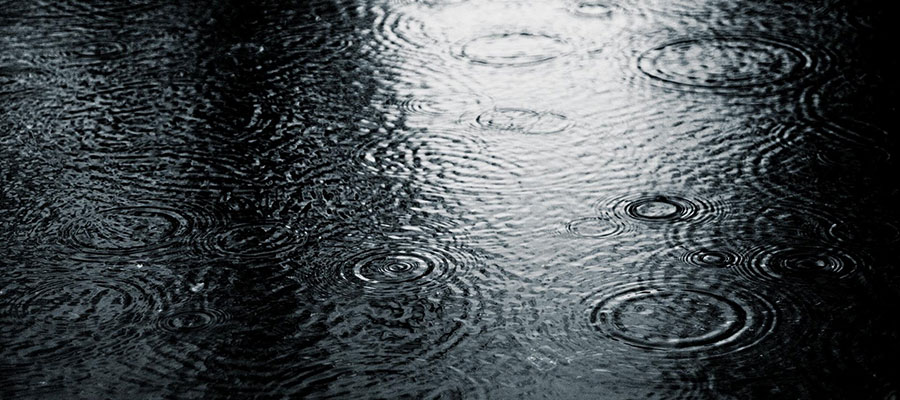 Soothing Rain Sounds to Relax your Mind